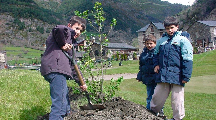 Nens plantant un arbre