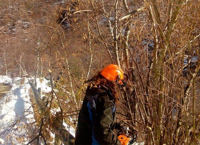 treballs al Parc Natural de l'Alt Pirineu