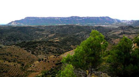 La mola del Montsant, vista des de la Serra de la Llena
