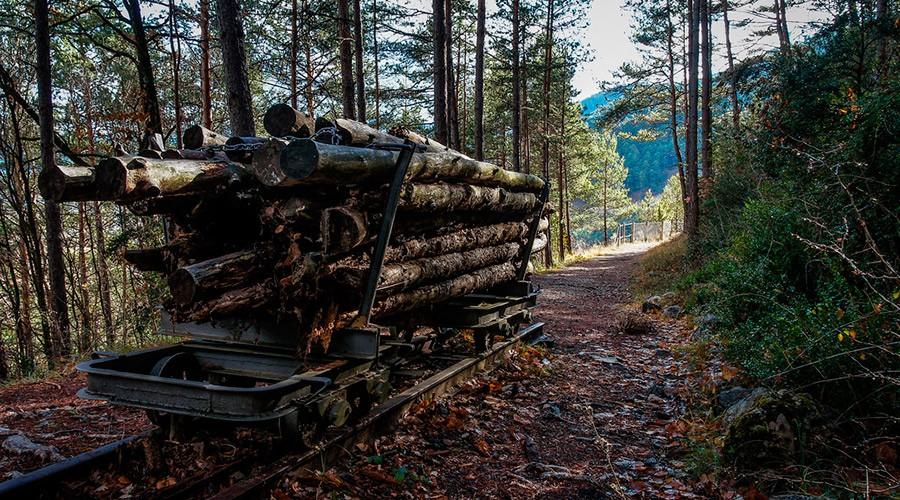 Tren de fusta de la Via del Nicolau