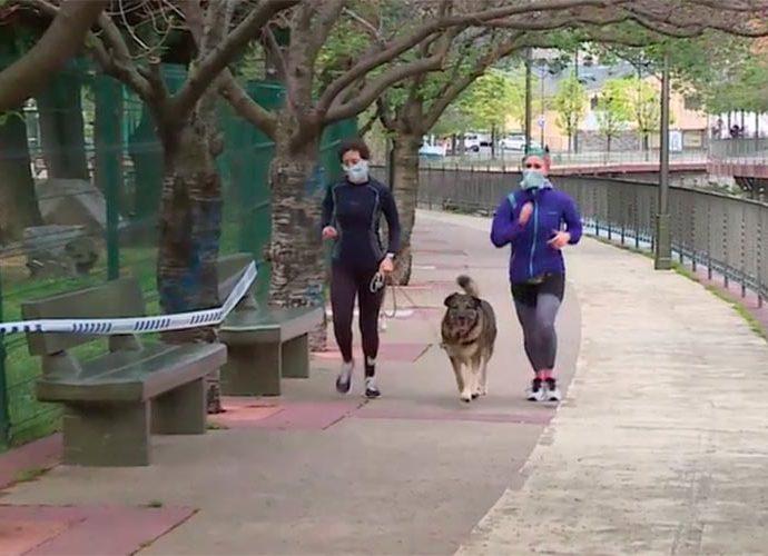 Dos corredors amb mascareta i el gos