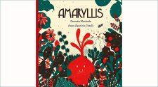 portada del conte Amaryllis