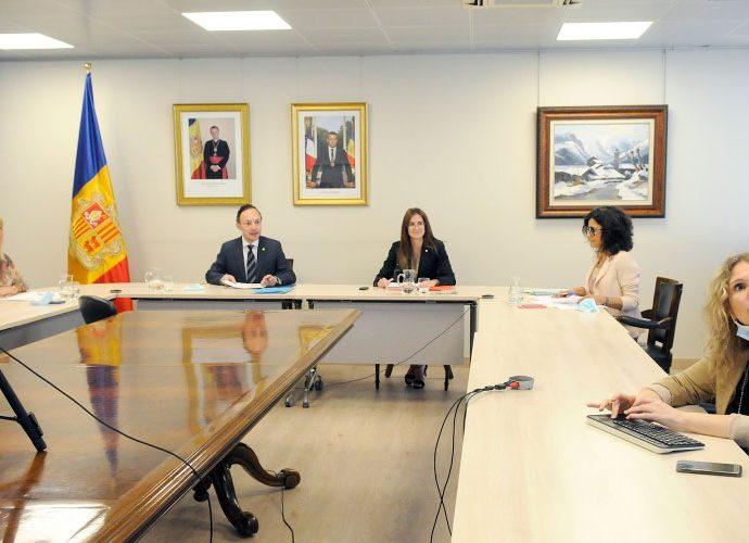 Reunió virtual de la Fundació Ramon Llull