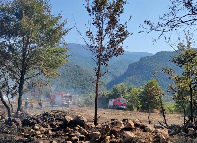 Els Bombers de la Generalitat extingeixen un incendi a Coll de Nargó